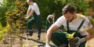 Groundwork employees